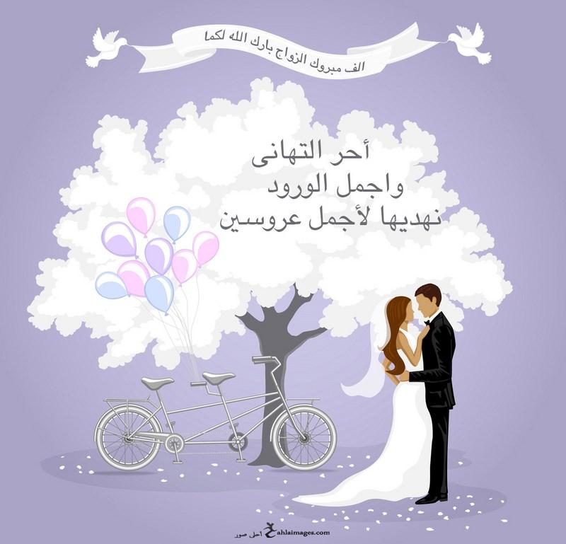 بالصور عبارات للعروس , اجمل كلمات تهنئة للعروس 745 7