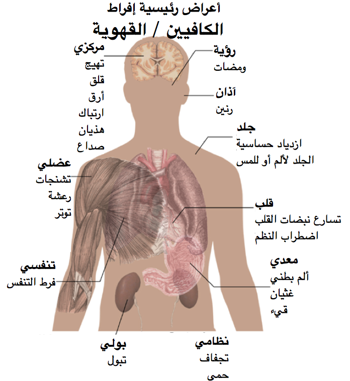 بالصور صور جسم الانسان , اروع صور لجسم الانسان 791