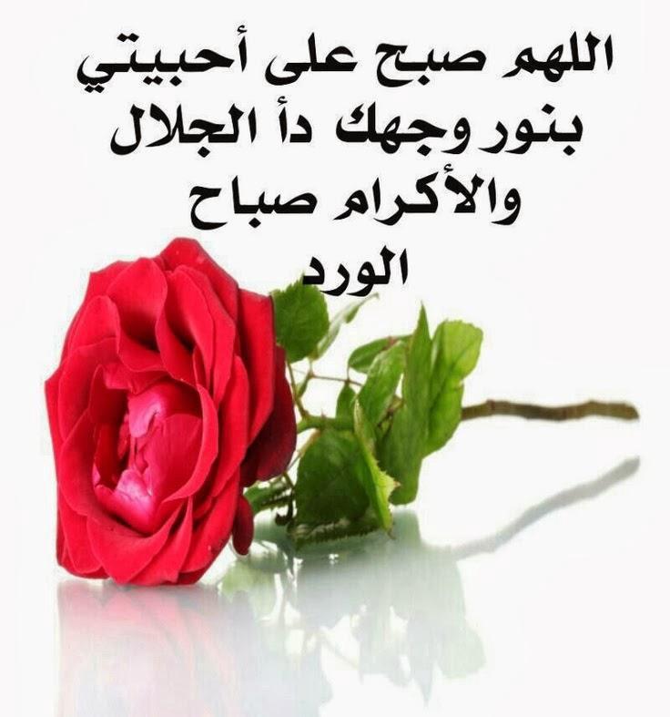 صورة شعر صباح الخير حبيبي , اروع اشعار صباح الخير للحبيب 937 6