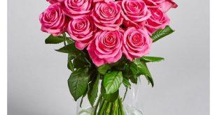 بالصور ورد طبيعي , ما اجمل الورد الطبيعى 989 13 310x165