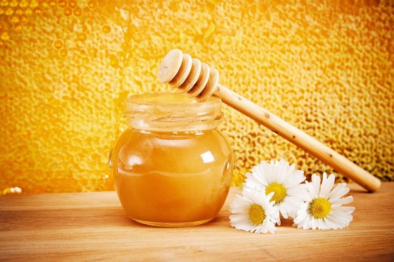 صور فوائد غذاء ملكات النحل , افضل فوائد غذاء ملكات النحل