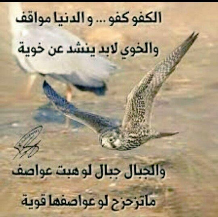 بالصور قصائد مدح الرجال الكفو , اقوي القصائد في مدح الرجال 956 2