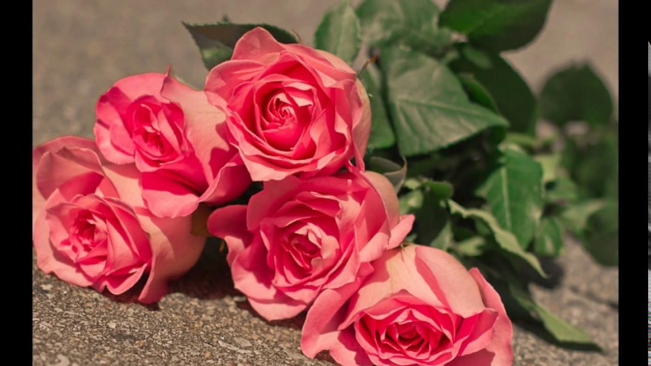 بالصور اجمل ورود الحب , اجمل باقات زهور الحب 978 10