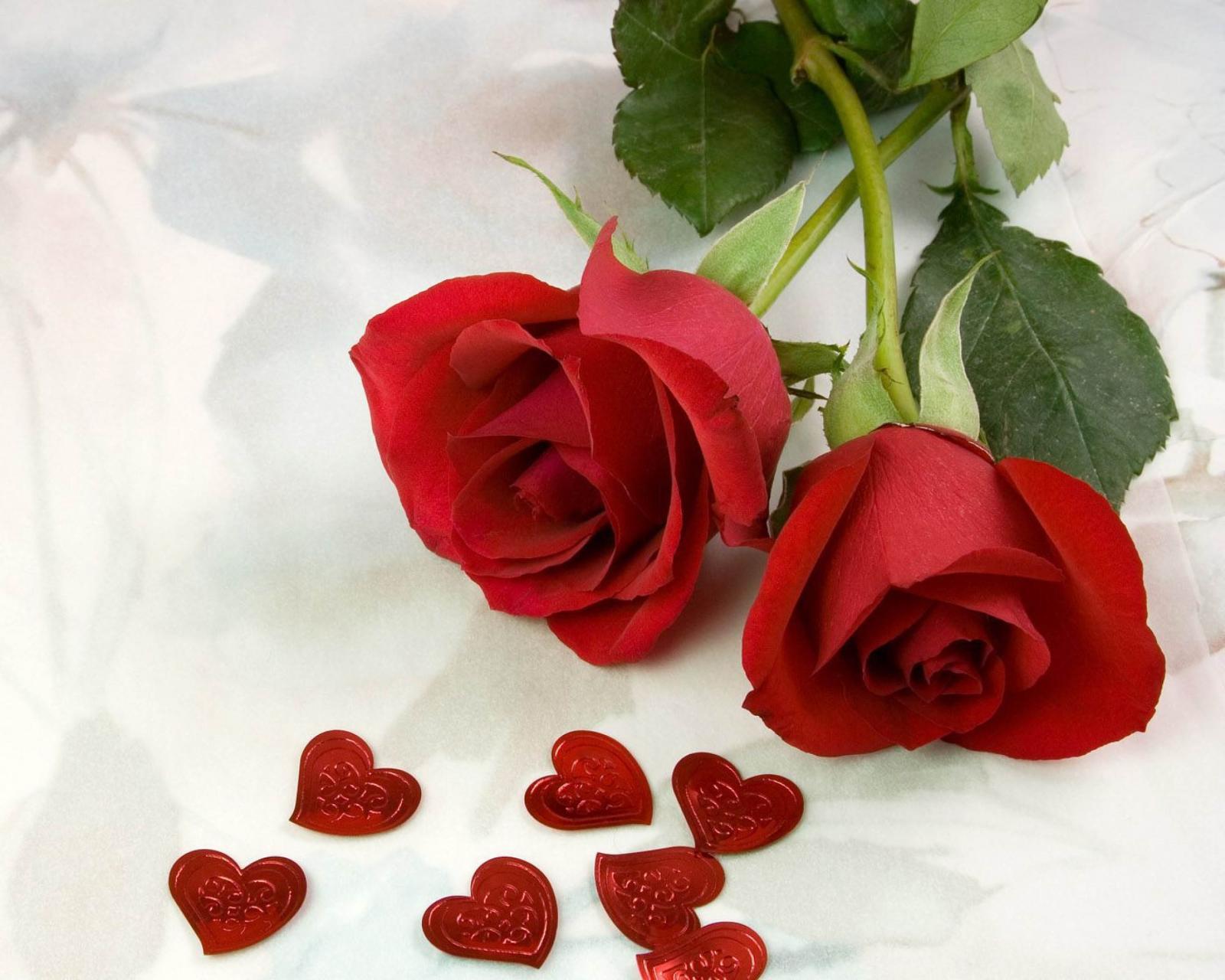 بالصور اجمل ورود الحب , اجمل باقات زهور الحب 978 13