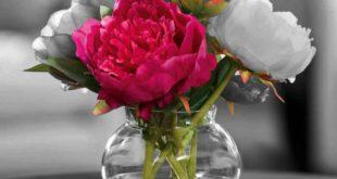صوره اجمل ورود الحب , اجمل باقات زهور الحب