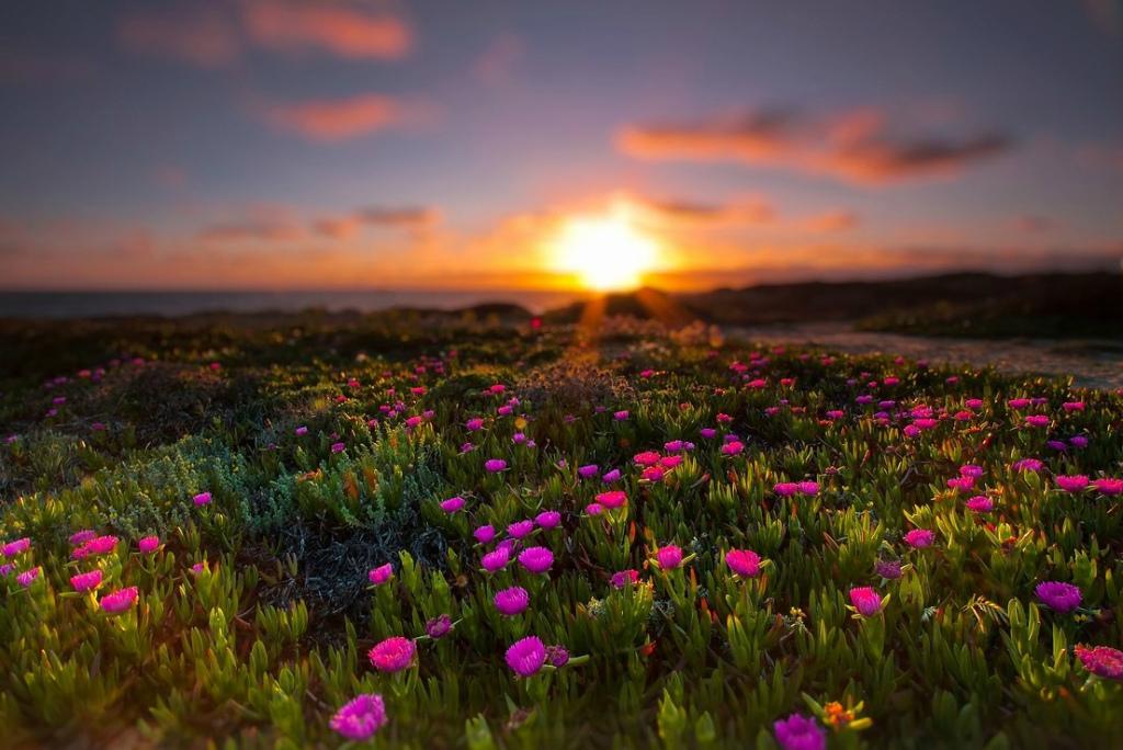بالصور اجمل الصور الطبيعية في العالم , اماكن ساحره 5416 10