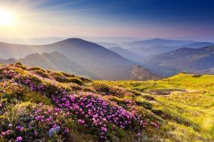 بالصور اجمل الصور الطبيعية في العالم , اماكن ساحره 5416 12 310x205