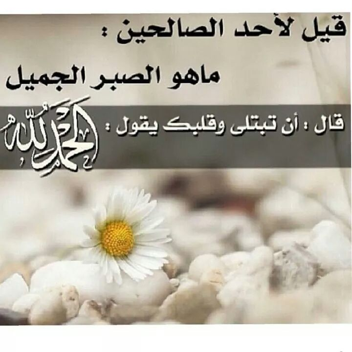 بالصور صور اسلاميه , اجمل الصور التى تخص الاسلام 5402 3