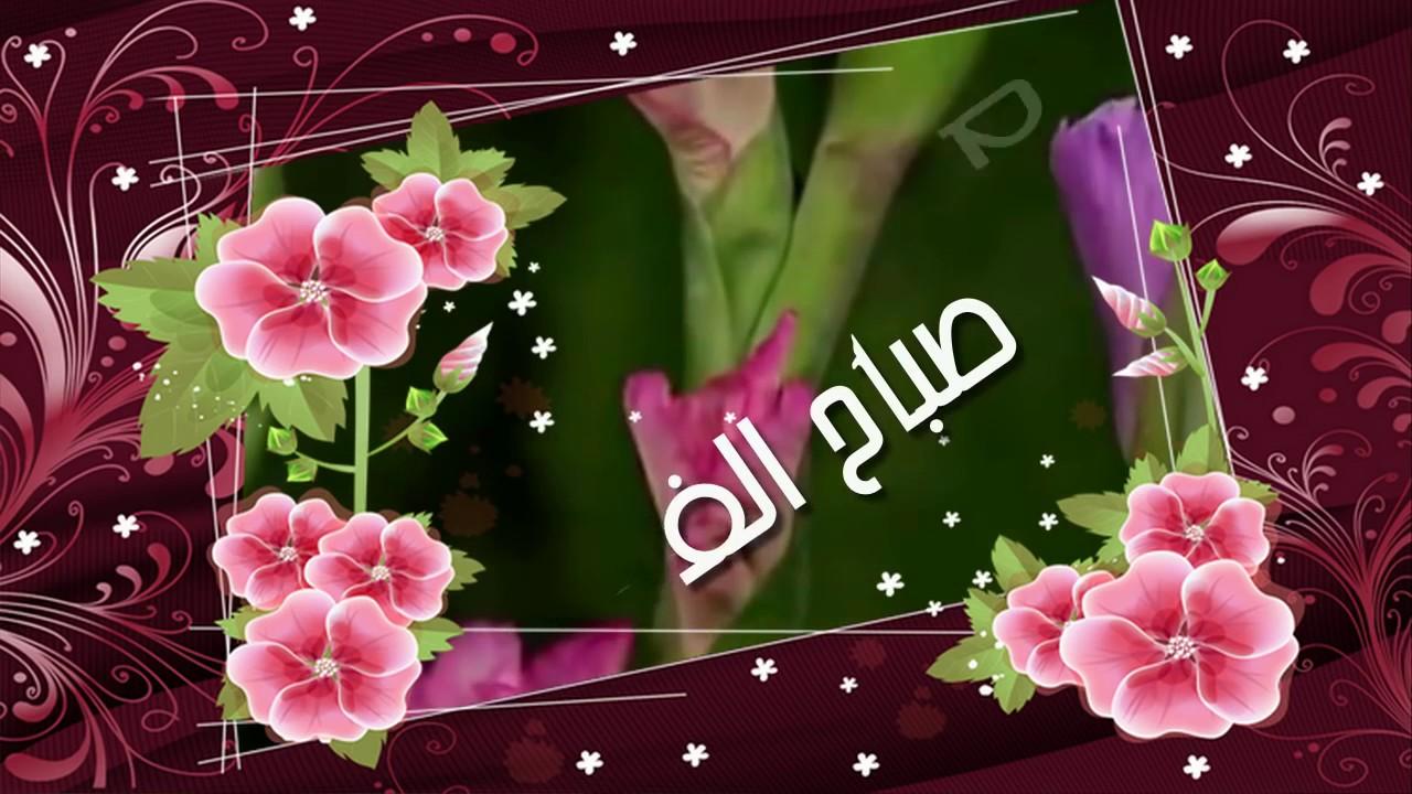 بالصور صباح الورد والفل , الصباح وكل ما هو جميل من الورد والفل 5731 13