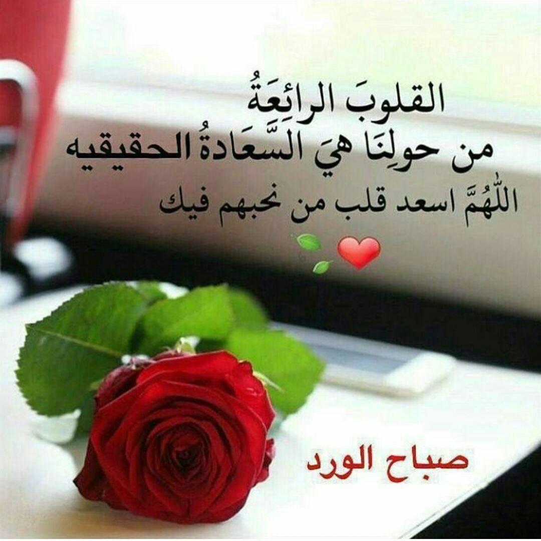 بالصور صباح الورد والفل , الصباح وكل ما هو جميل من الورد والفل 5731 2