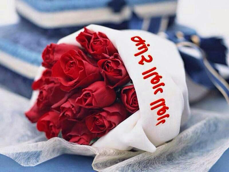 بالصور صباح الورد والفل , الصباح وكل ما هو جميل من الورد والفل 5731 8