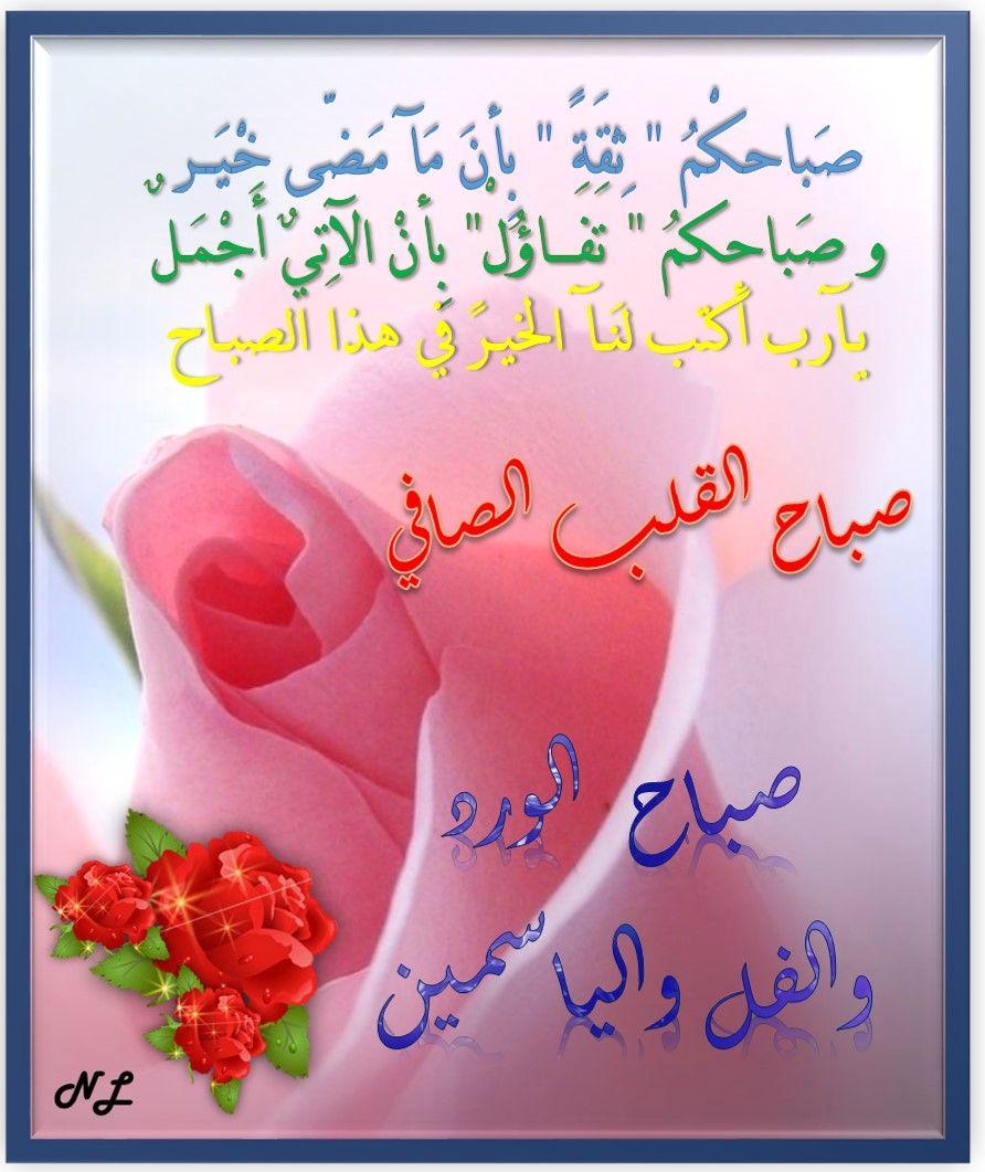 بالصور صباح الورد والفل , الصباح وكل ما هو جميل من الورد والفل 5731 9
