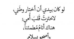 صوره شعر عيد الام , كلام عن امى الحبيبه