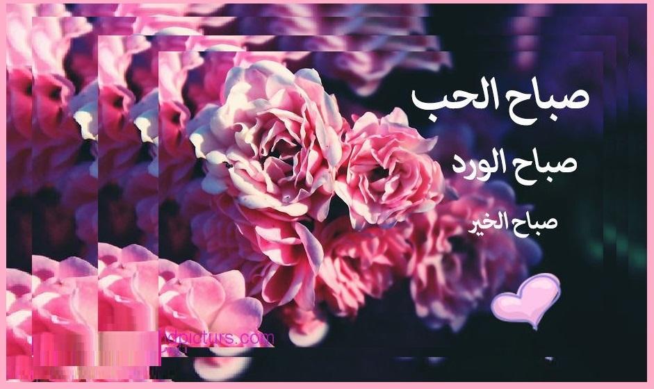 صورة مسجات صباح الخير حبيبي , رسائل صباحية للحبيب 1570 7