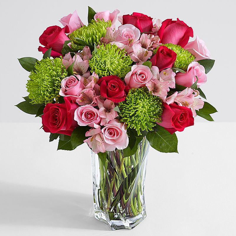 بالصور تنزيل صور ورد , الورد وجماله وابرازه فى صورة جميله 1657 11