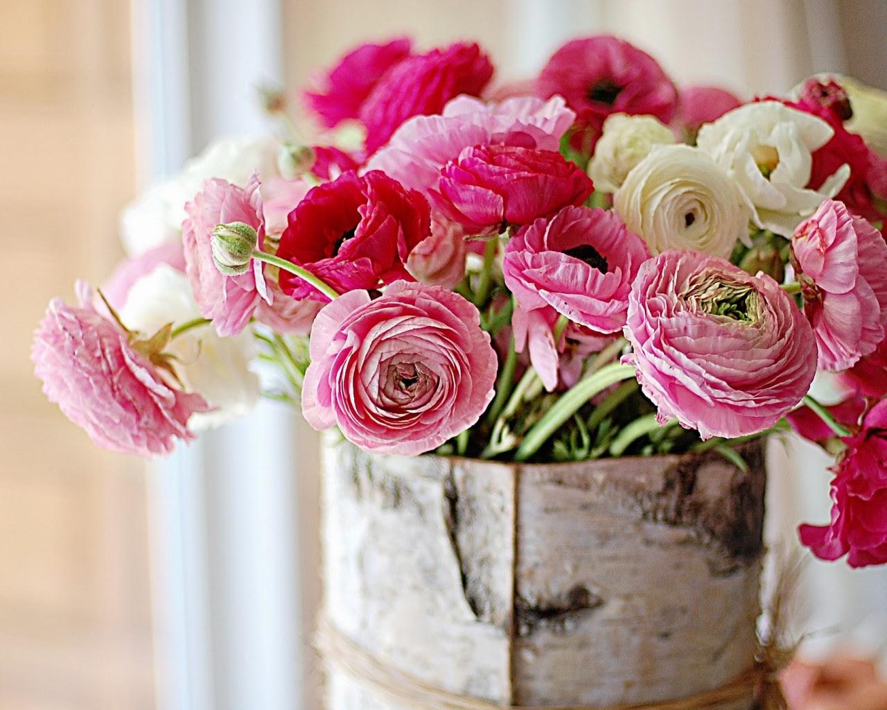 بالصور تنزيل صور ورد , الورد وجماله وابرازه فى صورة جميله 1657 2
