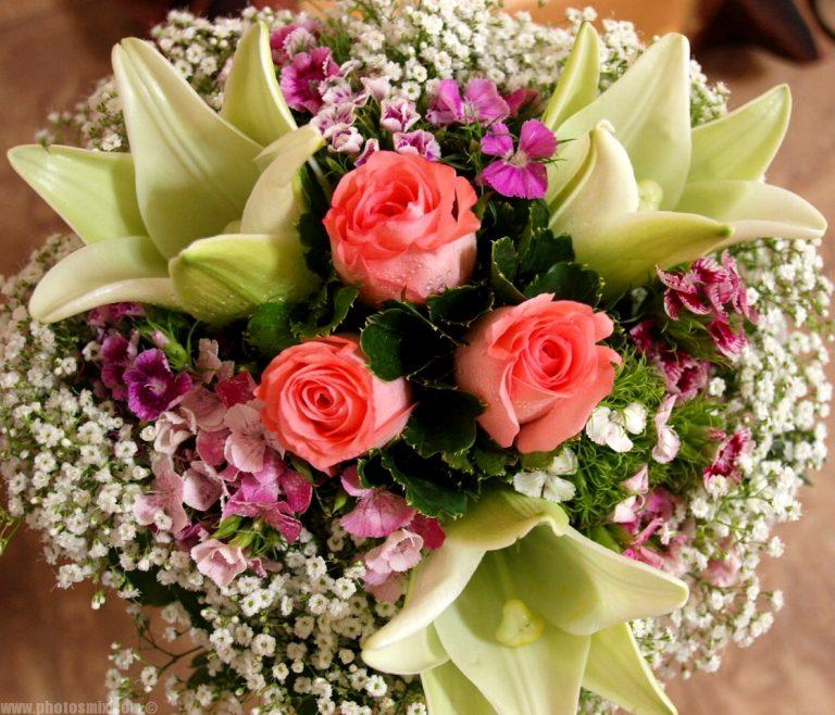 بالصور تنزيل صور ورد , الورد وجماله وابرازه فى صورة جميله 1657 5