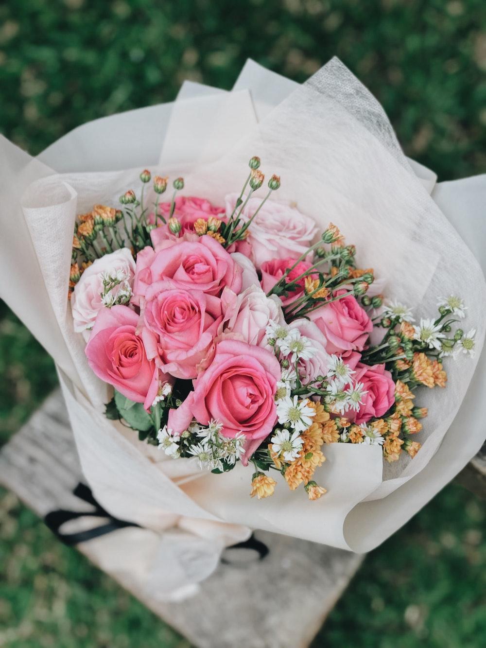 بالصور تنزيل صور ورد , الورد وجماله وابرازه فى صورة جميله 1657 7