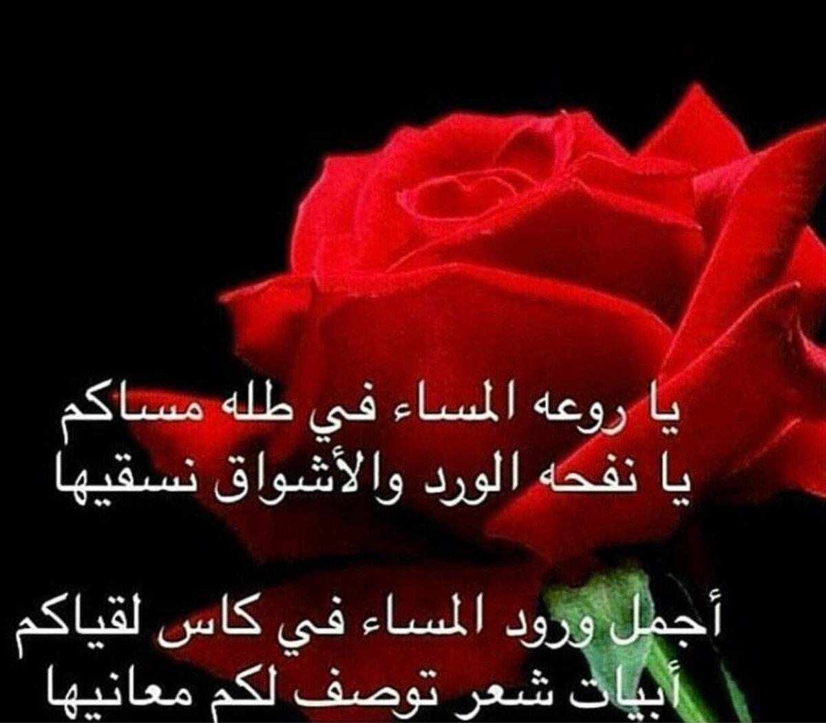 بالصور احلى اشعار , الشعر واجزاء جميله من الشعر 1703 5