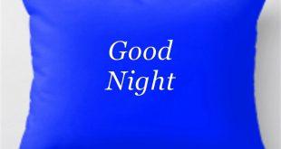 بالصور مساء الخير بالانجليزي , التماسى باللغه الانجليزيه اللذيذه 1720 12 310x165