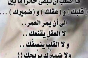 بالصور صور كلمات حب , كلمات للحبيبه مع صور 5384 2.jpeg 310x205