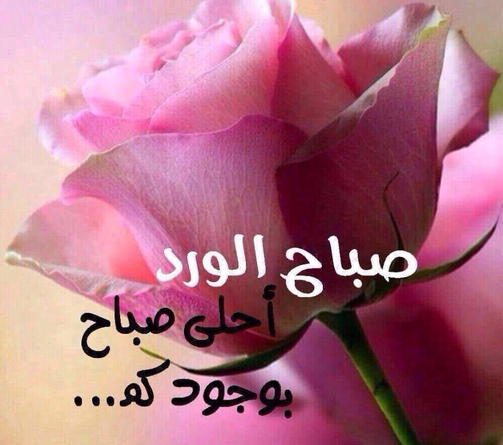 بالصور بوستات صباحية , السوشال ميديا مع اجمل بوستات للصباح 5388 11