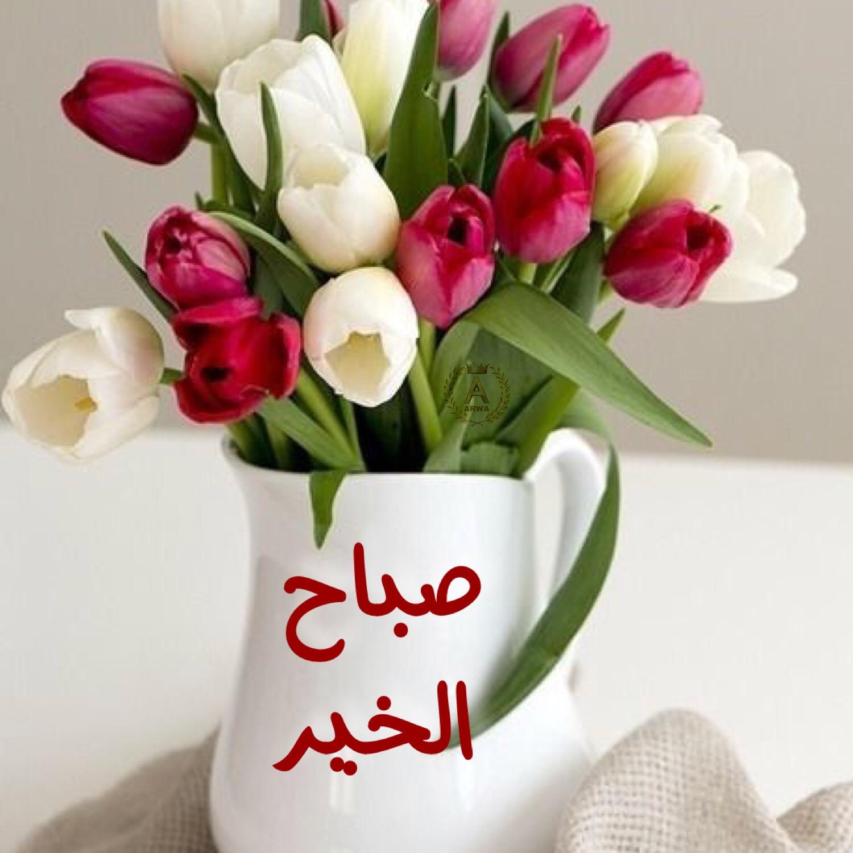 بالصور بوستات صباحية , السوشال ميديا مع اجمل بوستات للصباح 5388 14