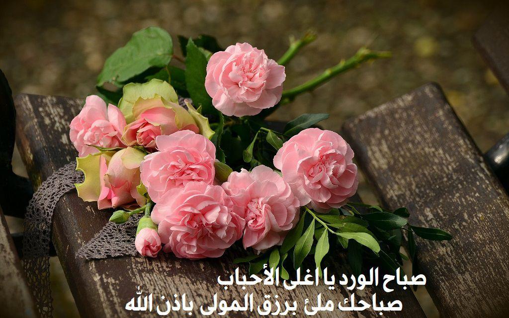 بالصور بوستات صباحية , السوشال ميديا مع اجمل بوستات للصباح 5388 3