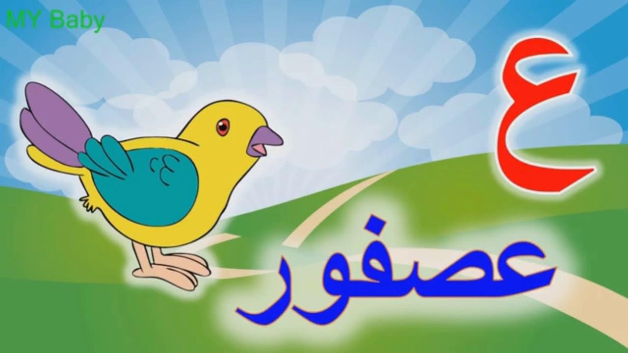 بالصور صور حرف ع , صور لاجمل حروف اللغه العربيه 6741 4
