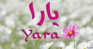 بالصور دلع اسم يارا , اختاري من بين اسماء دلع ليارا 10762 8 310x165