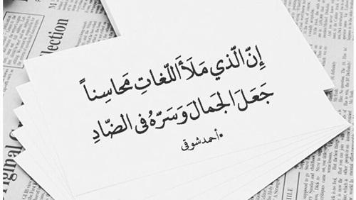 بالصور ابيات شعر عن اللغة العربية , ماذا قال الشعراء عن لغتنا العربية الفصحي 11330 2