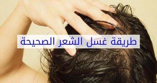 صور طريقة غسل الشعر الصحيحة بالصور , نصائح للحفاظ على الشعر من التلف