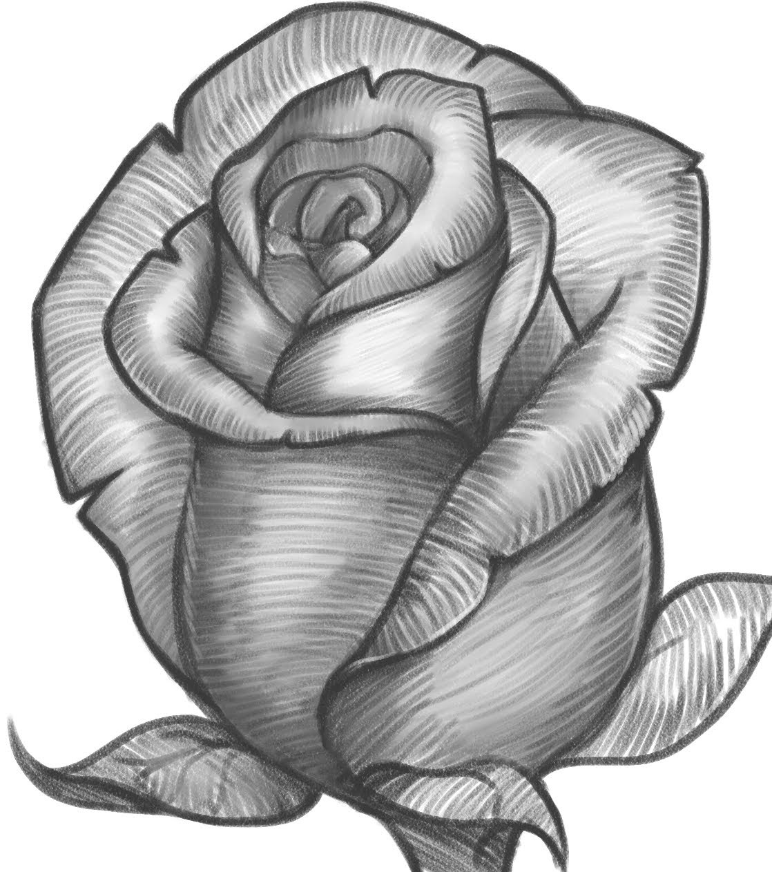 صور رسومات بالرصاص ورد , الورد تعبيره الحب