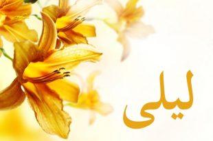 بالصور معنى اسم ليلى , تعرف على معنى اسم ليلي بالقاموس العربي 11938 2 310x205