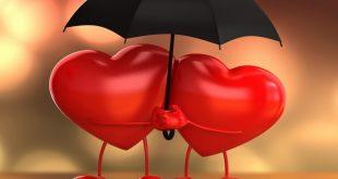 بالصور كلمات بشل حبك معي , تعرف على مغني اغنية بشل حبك معي 11945 10 310x165