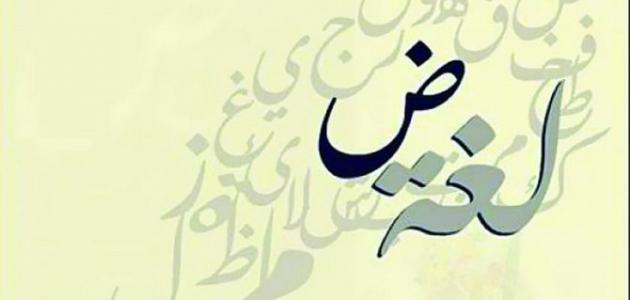 صور من عجائب اللغة العربية , تعرف على اغرب المعلومات عن اللغة العربية