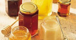 صورة انواع العسل وفوائده , ماذا تعرف عن العسل وفوائد ذلك المكون الرائع
