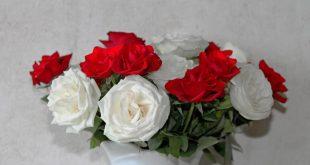 صور صور ورود عيد الحب , احلي و اجمل صور ورود حمراء