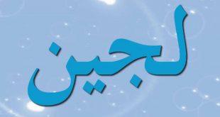 صورة معنى كلمة لجة , شرح كلمه لجة