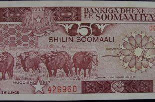 صورة معلومات عن الصومال , اعرف اكثر عن الصومال