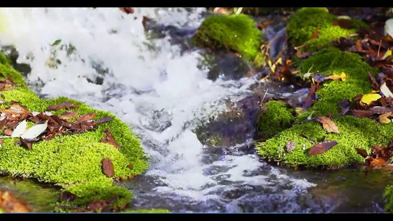 صور مناظر خلابة متحركة , احلي و اجمل صور متحركه للطبيعه