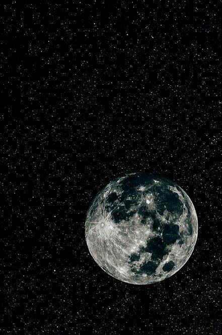 sailor moon gif tumblr