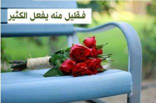 صور كلمات من ورود , اجمل الكلام بخلفية زهور