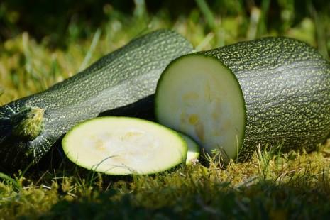 صورة تفسير حلم الكوسا الخضراء , ماذا تعني الكوسا في الحلم لكنها خضراء 11309 3