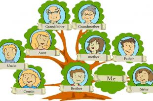 صورة بحث حول شجرة العائلة , ماذا يعني شجرة العائلة