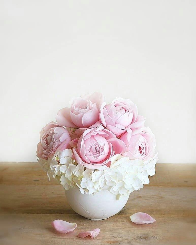 صورة ورود جميلة , اجمل باقات الازهار