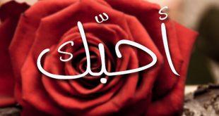 صورة رسائل بحبك , مسجات كلمة حب