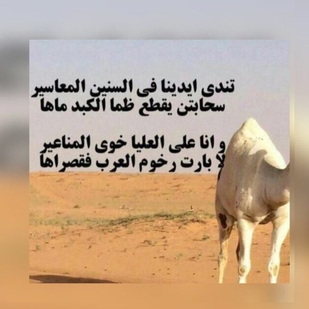صورة قصيدة مدح في الخوي , عبارات قويه فى الاخوه الاوفياء