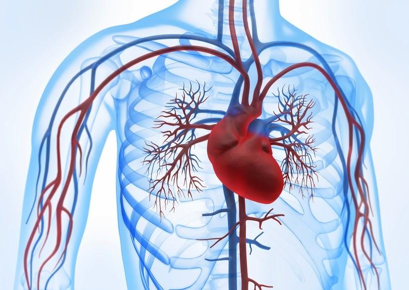 صور علاج مرض القلب , طرق علاج مرض القلب