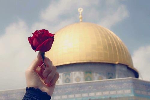 صورة صور عن فلسطين , رمزيات عن فلسطين